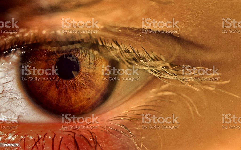 Eyes never lie stock photo