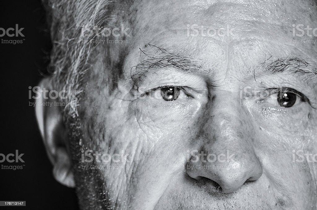 Eyes tell the truth. royalty-free stock photo