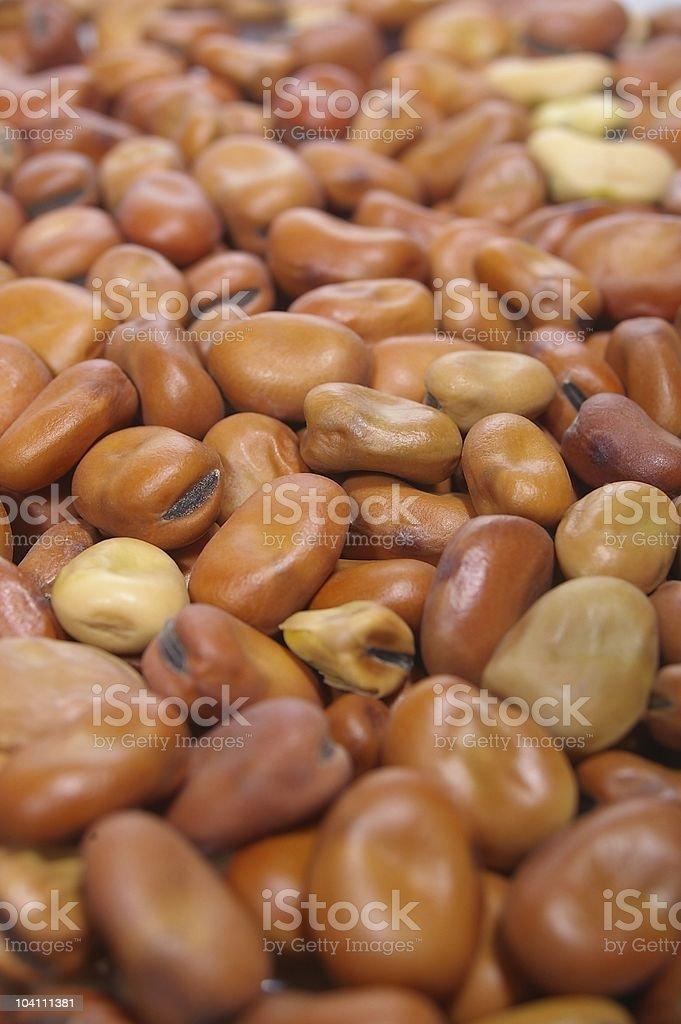 faba fava beans stock photo