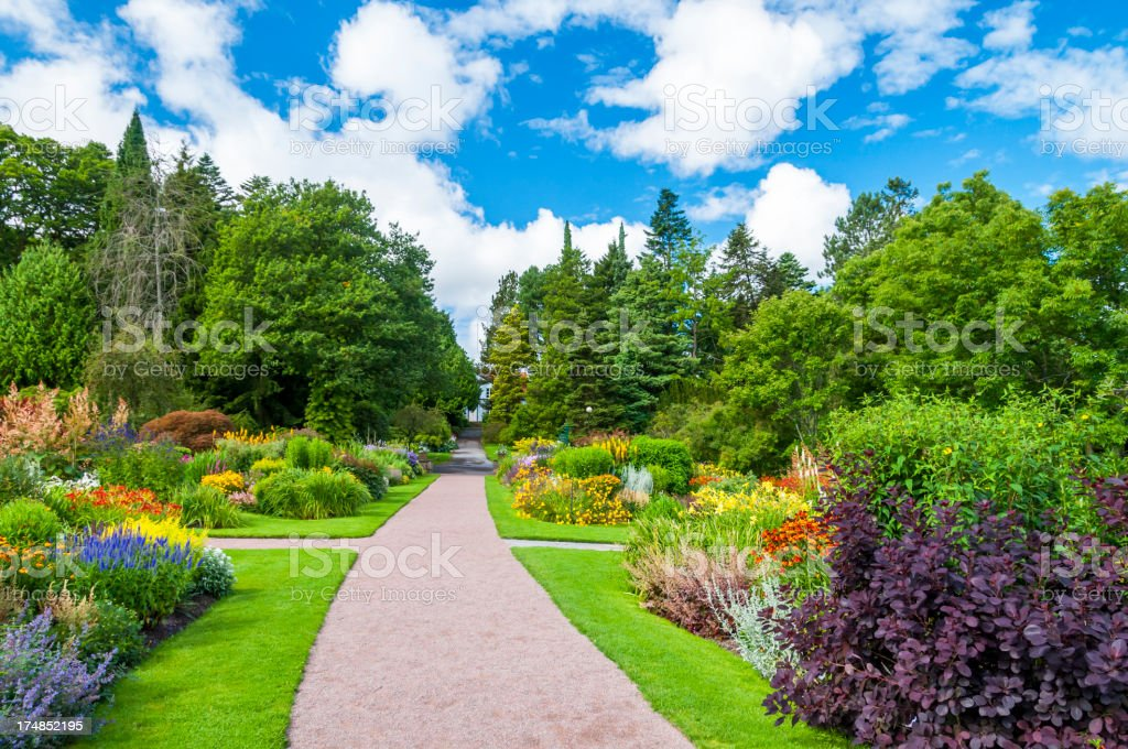 Fabulous garden stock photo
