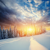Fabulous winter landscape in the mountains