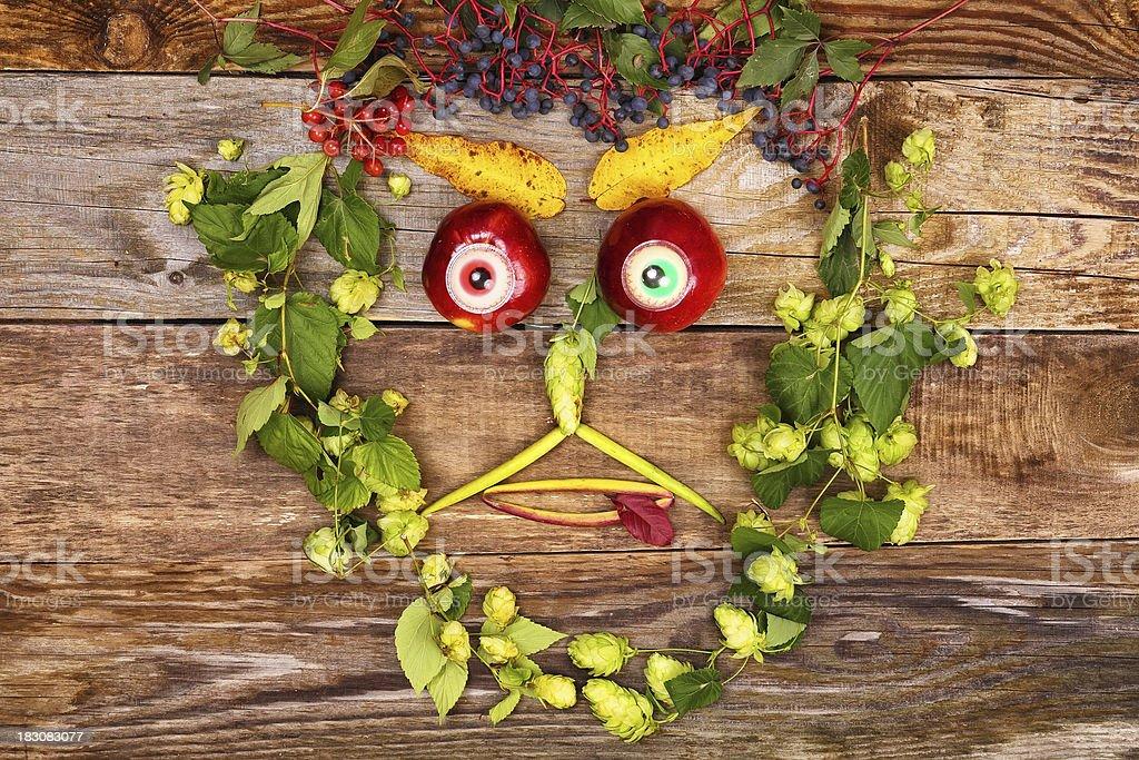 顔のフルーツと植物 ロイヤリティフリーストックフォト
