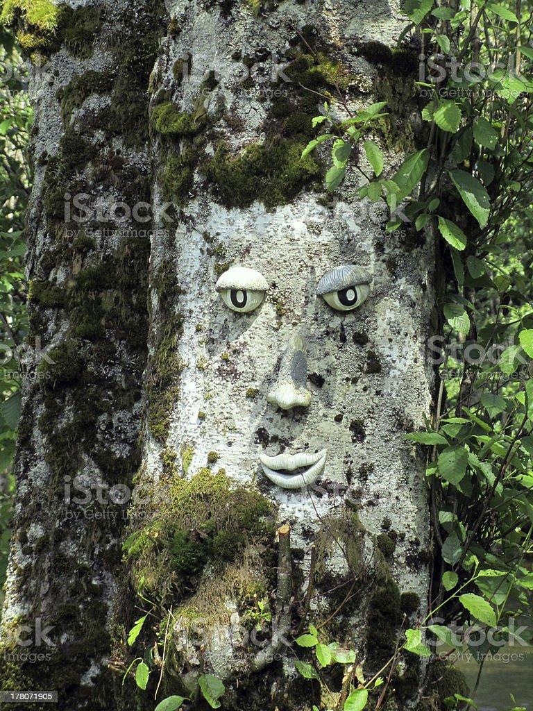 Visage sculpté dans un arbre photo libre de droits