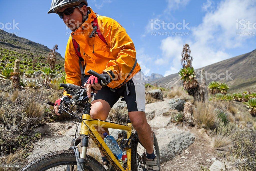 Face the downhill, Mt. Kenya royalty-free stock photo