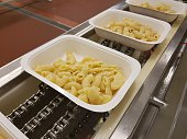 Factory Food Manufacturing