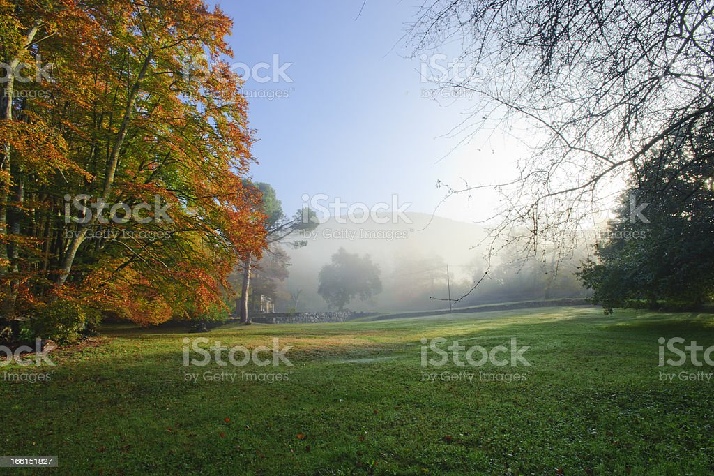 Fageda royalty-free stock photo