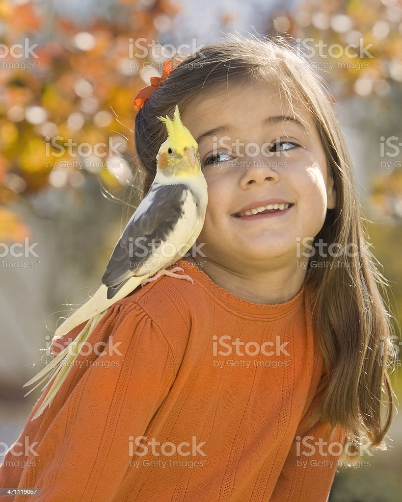 Fair Feathered Friend royalty-free stock photo