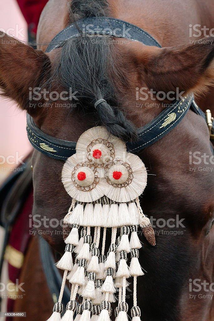 Fair de Sevilha. Cavalo close-up. Decoração de cavalo foto royalty-free