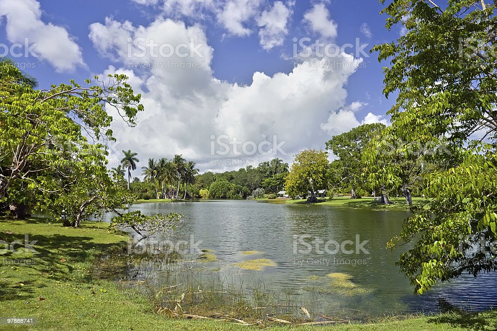 Fairchild tropical botanic garden stock photo