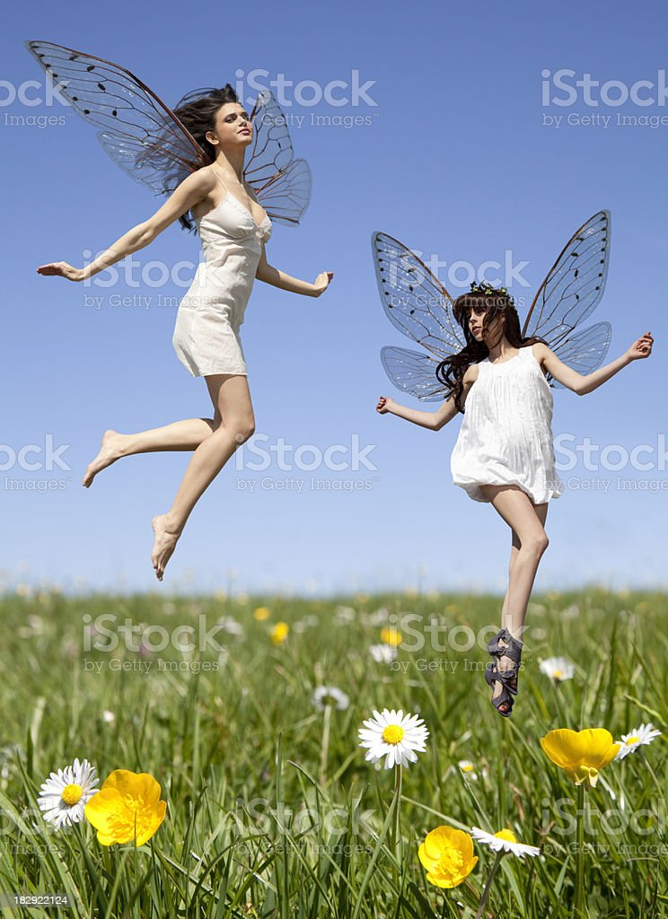 Fairies royalty-free stock photo