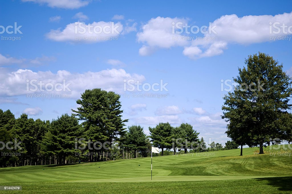 Fairway at a Professional Golf Course with Putting Green stock photo