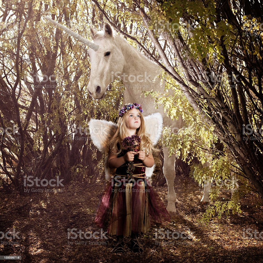 Fairy and Unicorn stock photo