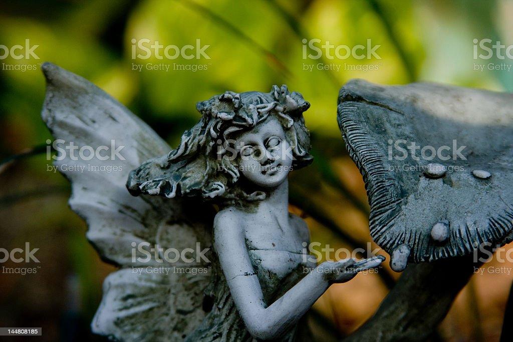 fairy close up stock photo