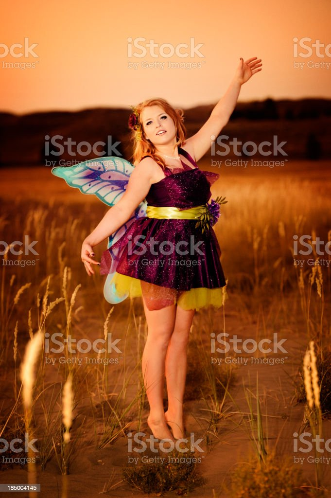 Fairy Dancing In The Moonlight stock photo