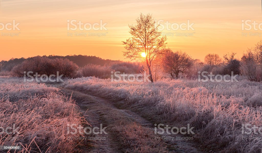 Fairy frosty winter morning stock photo