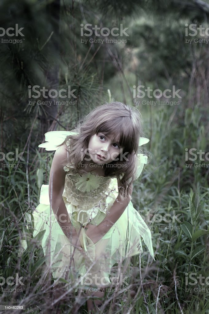 Fairy in the forest stock photo