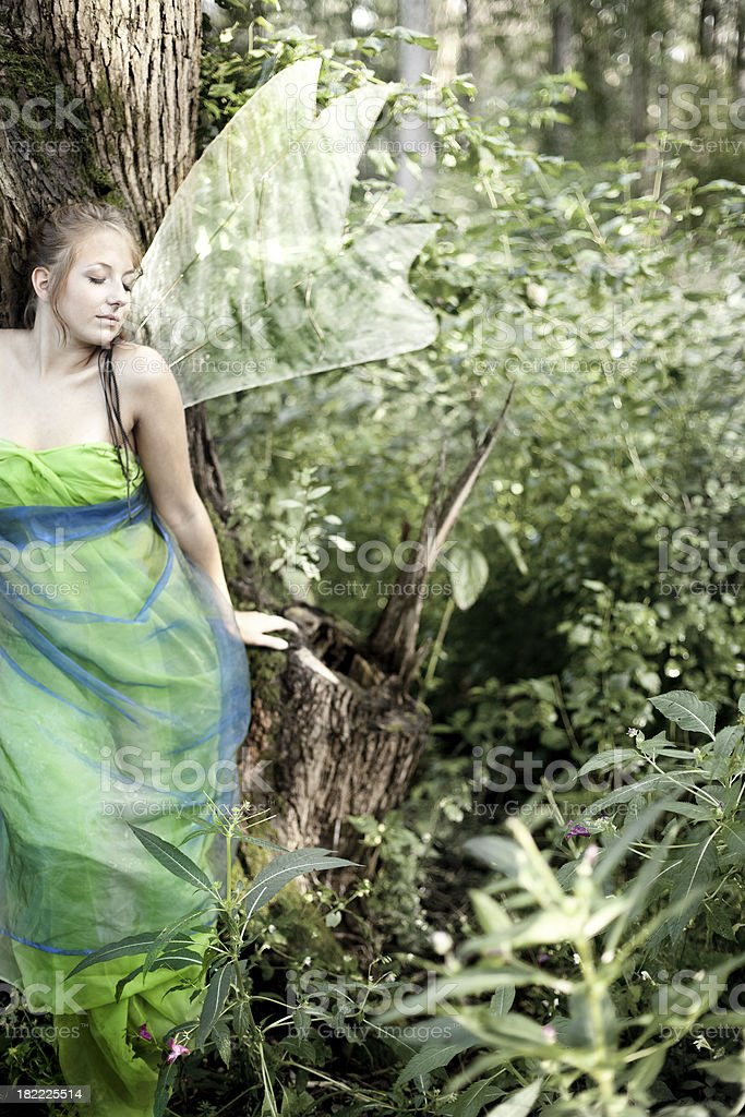 Fairy in the Woods royalty-free stock photo