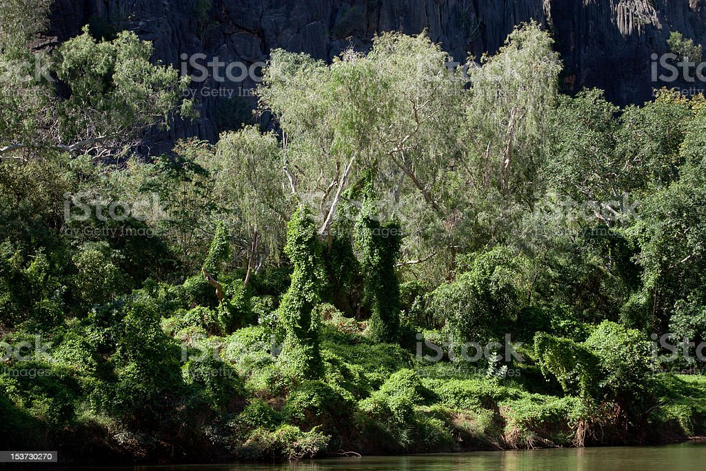Fairy Land at Windjana Gorge stock photo