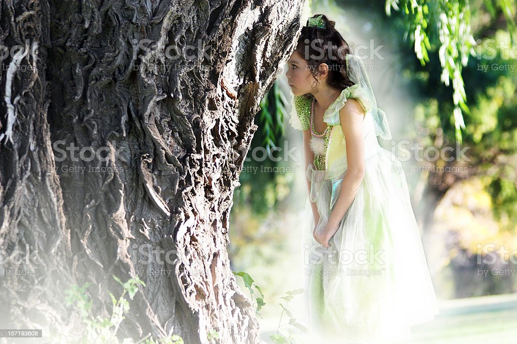 Fairy Princess royalty-free stock photo