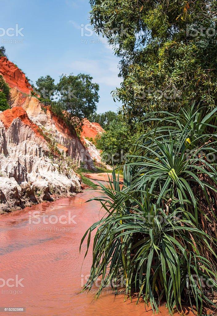 Fairy Stream in Mui Ne, Vietnam stock photo