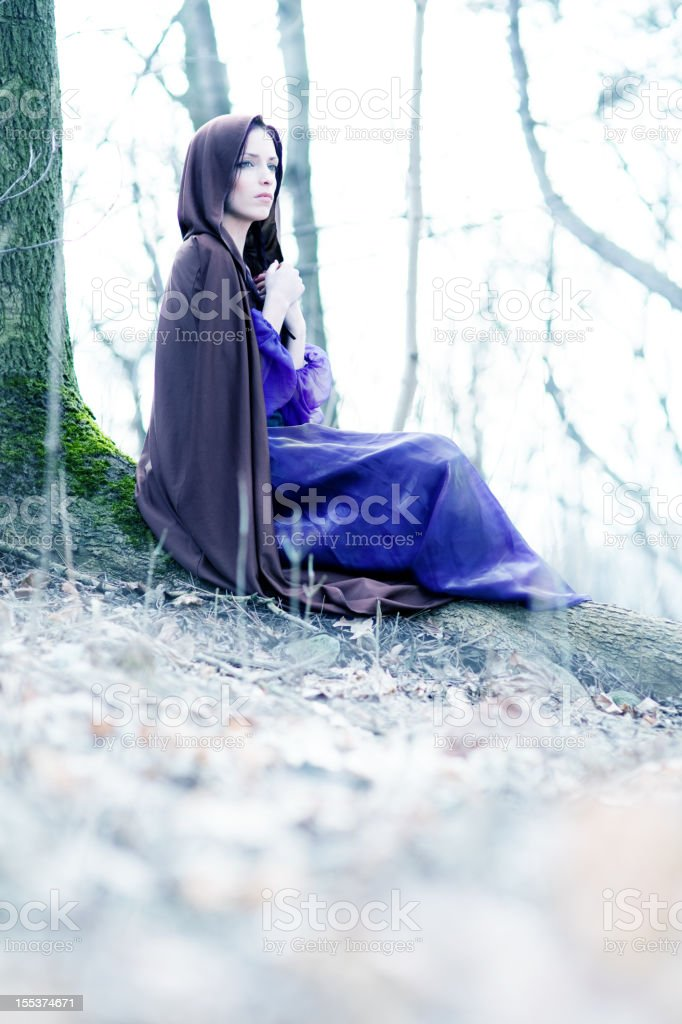 Fairy tale lady royalty-free stock photo