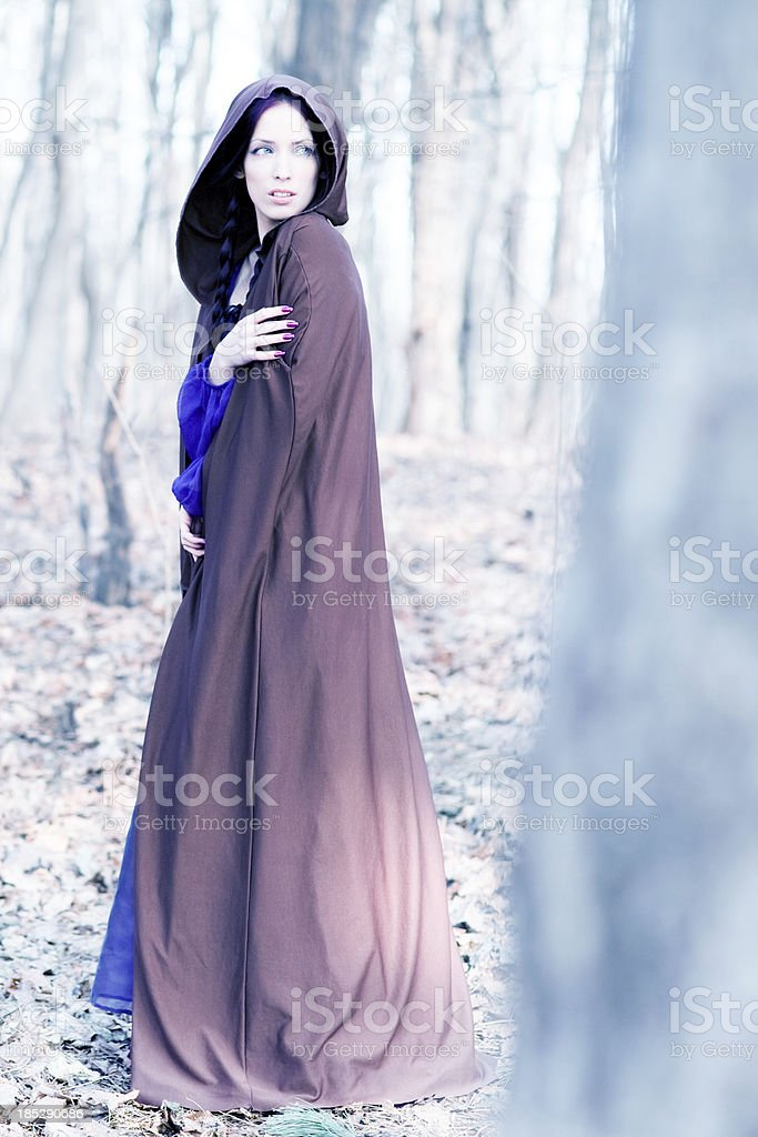 Fairy tale lady royalty-free stock photo