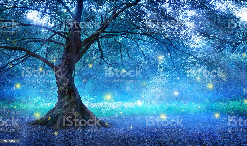 Fairy Tree In Mystic Forest stock photo