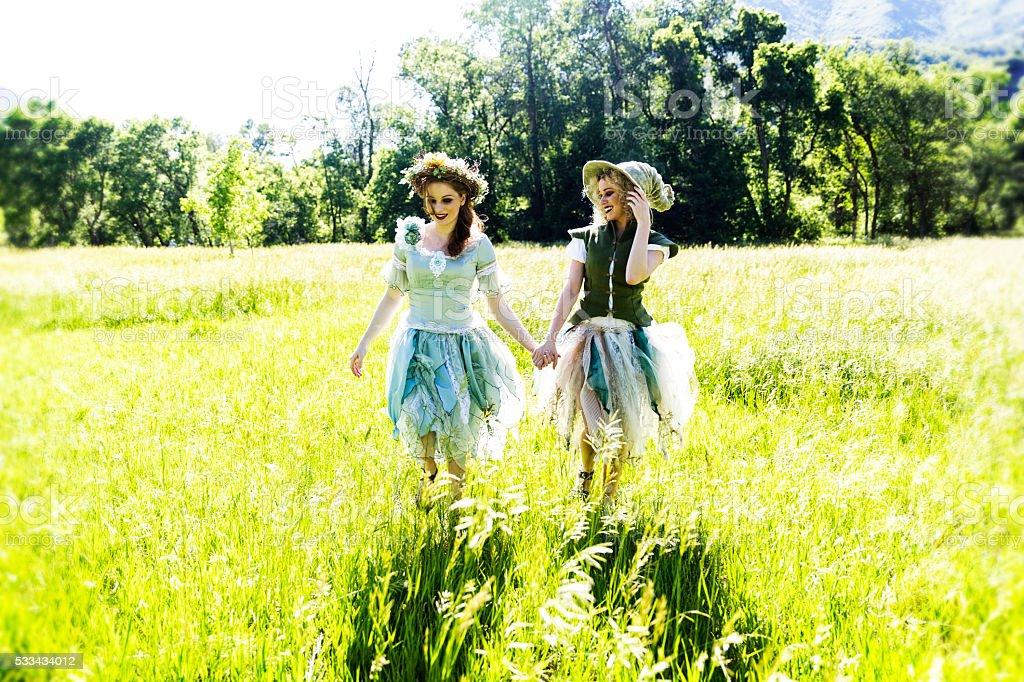 Fairys stock photo