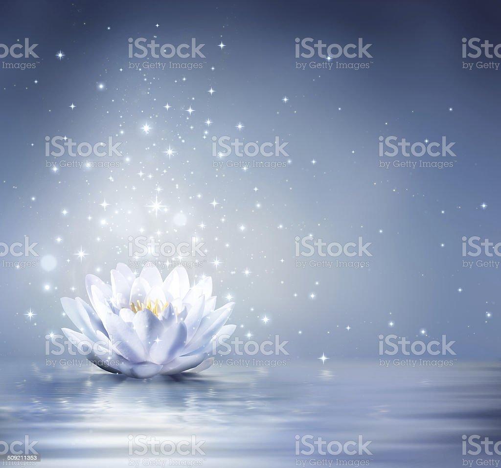 fairytale background stock photo