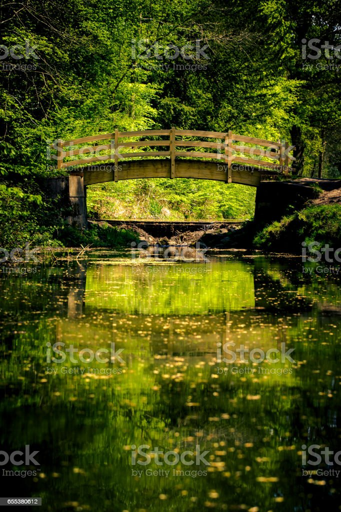 Fairytale bridge in green park stock photo