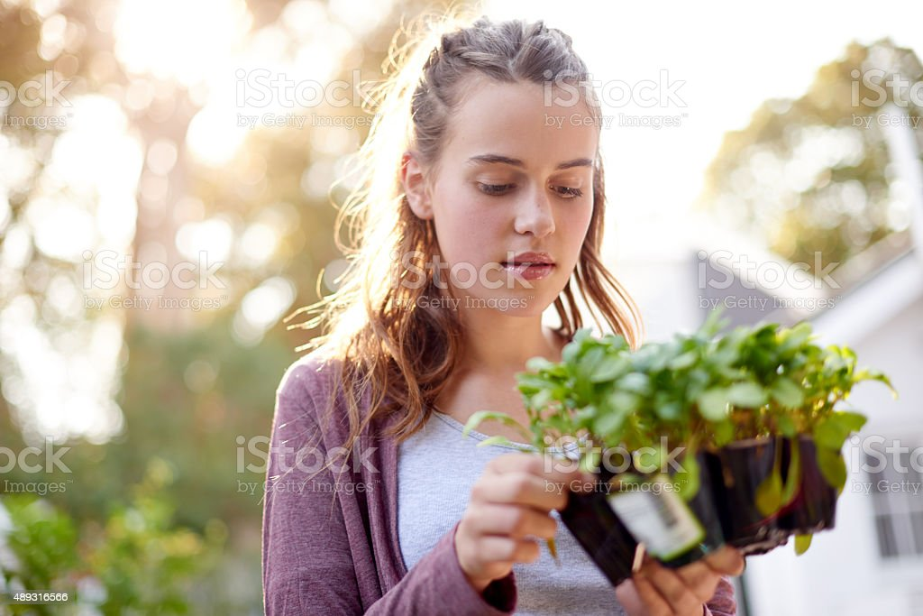 Faith plants the seed and love makes it grow stock photo