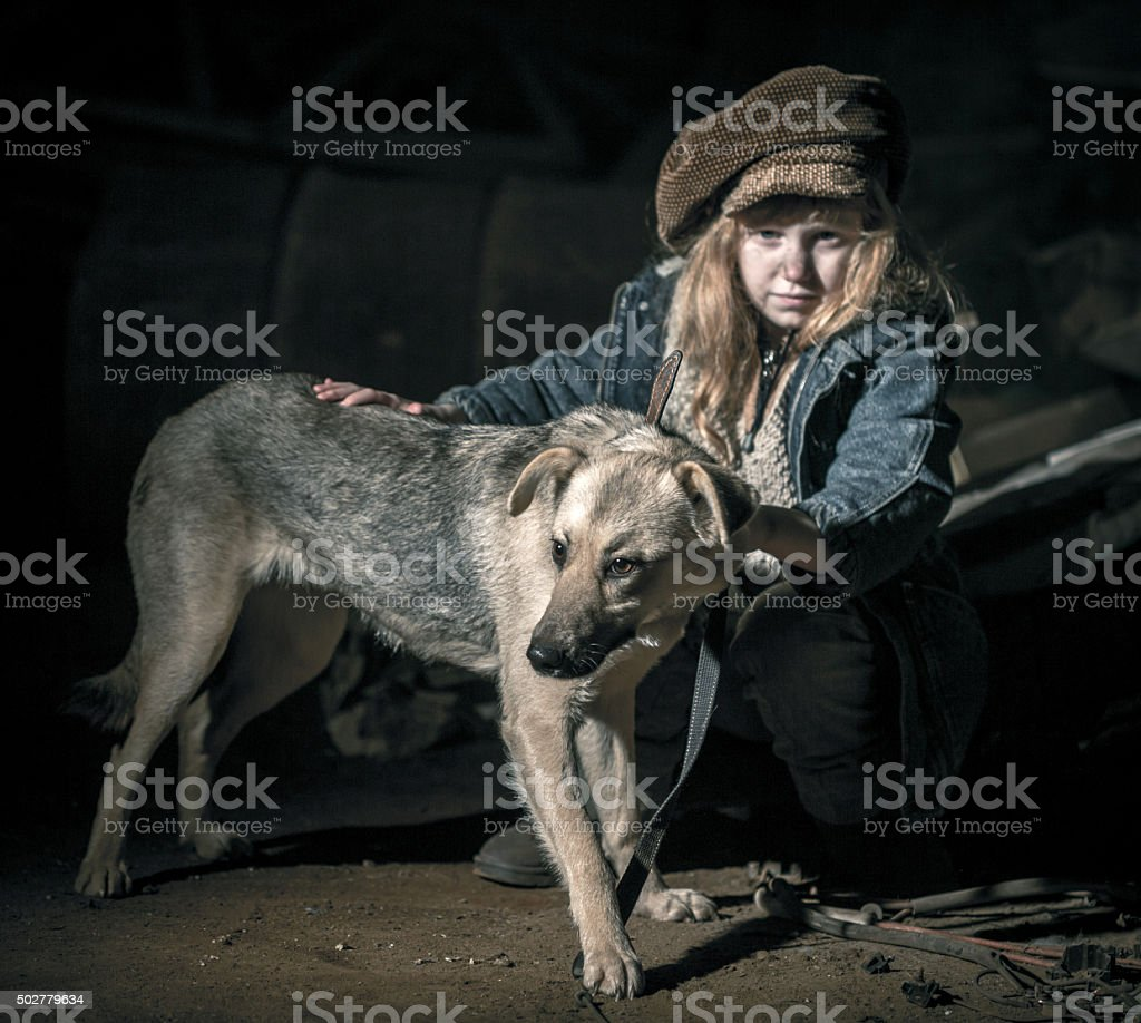 Faithful Friend In Ghetto stock photo