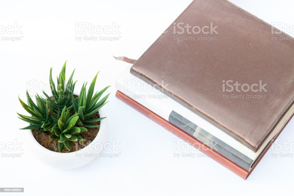 Fake flower with book stock photo