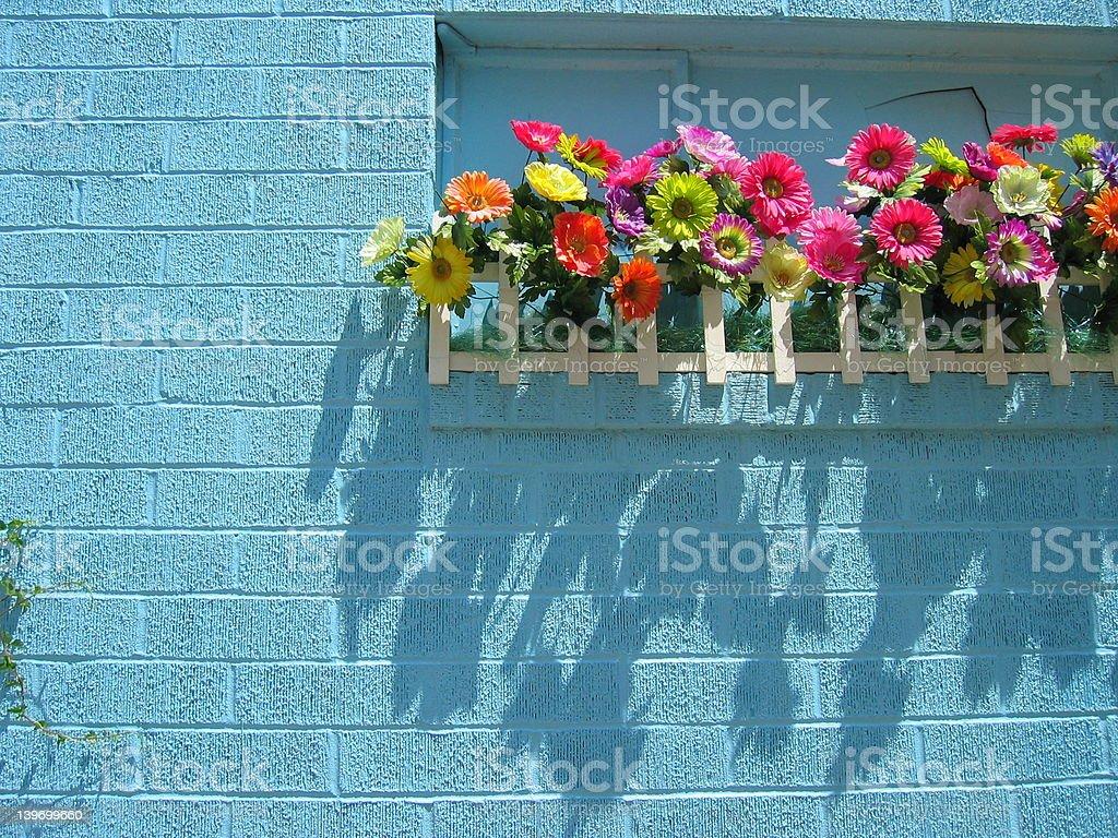 fake flowers royalty-free stock photo