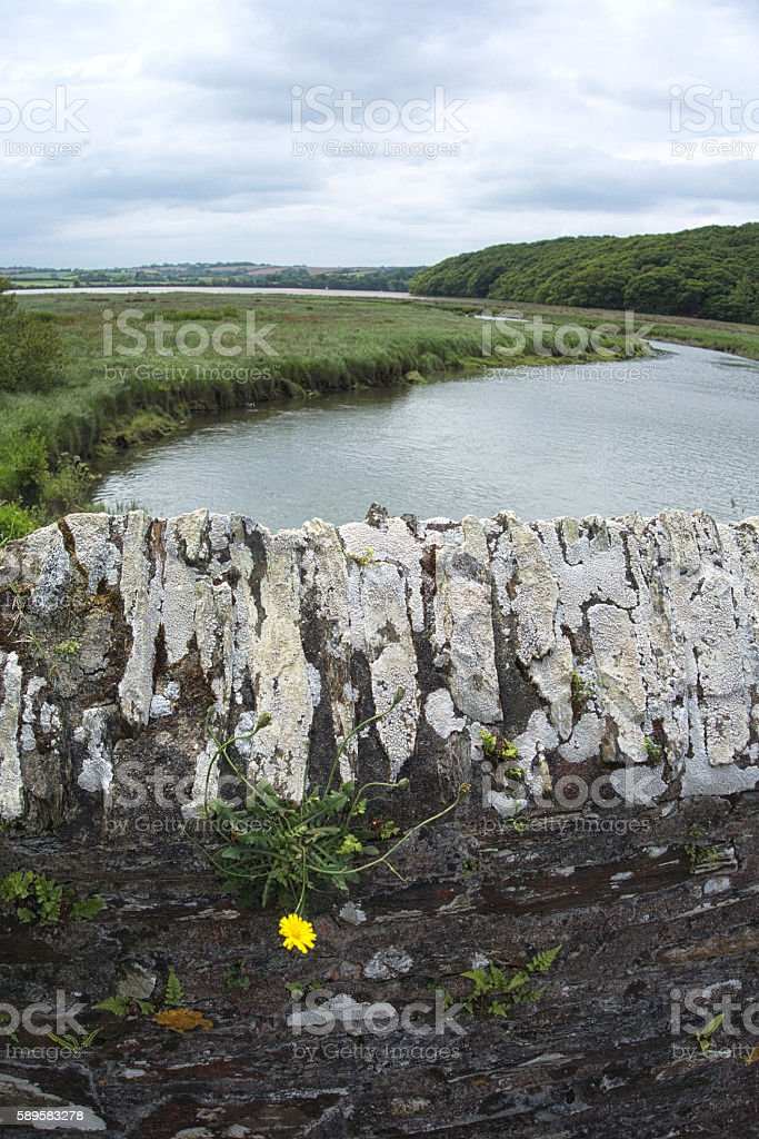 Fal River from bridge near Ruan Lanihorne Cornwall UK stock photo