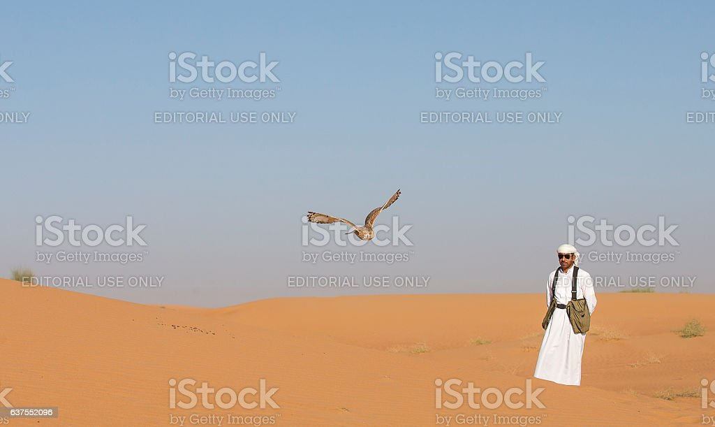 Falconer training a desert owl in a desert near Dubai stock photo