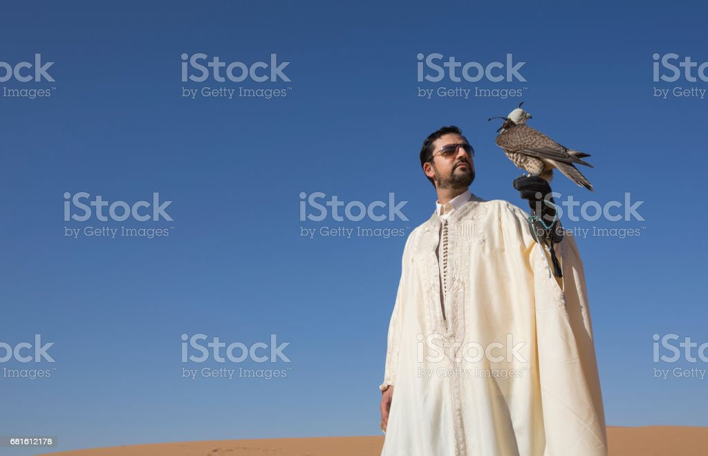 Falconer with a falcon in a desert at sunrise stock photo