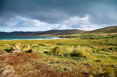 Falkland Island Landscape