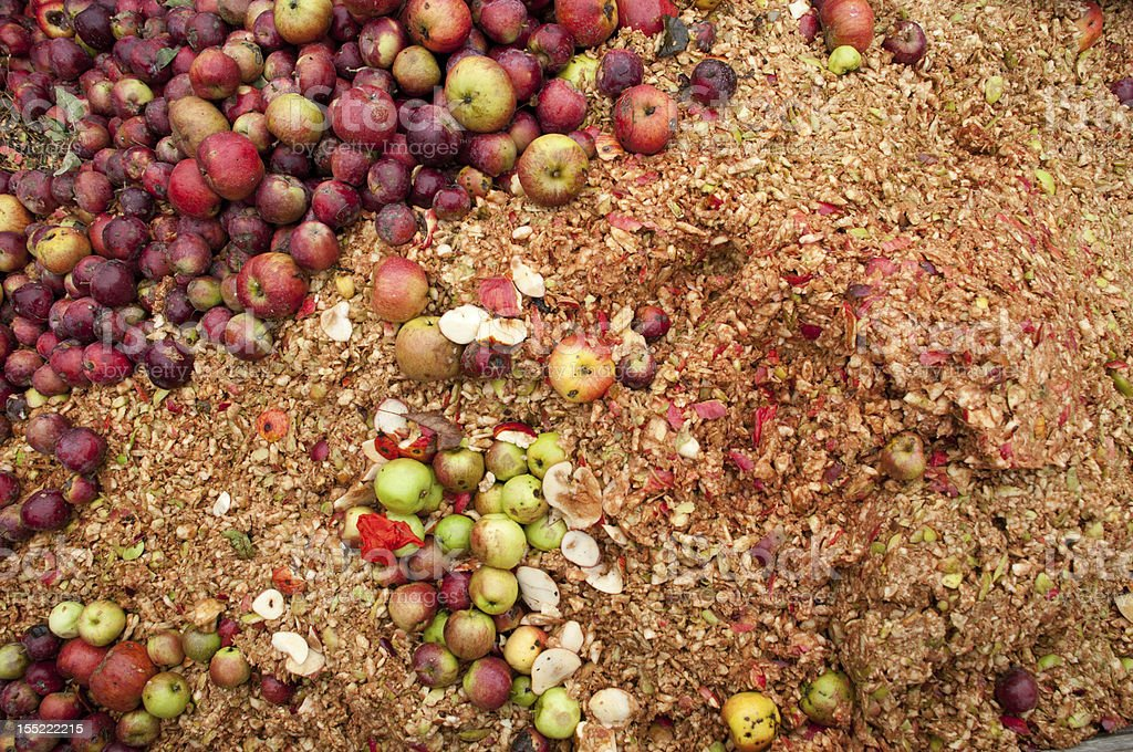 Fall Apple Harvest Remains stock photo