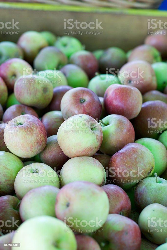 Fall Apples royalty-free stock photo