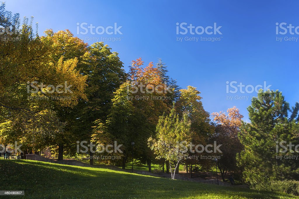 Fall arrives to Campus royalty-free stock photo