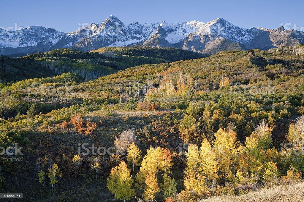 Fall At The Dallas Divide, Colorado. stock photo