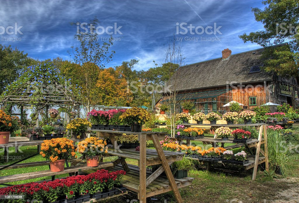 HDR Fall at the Garden Center royalty-free stock photo