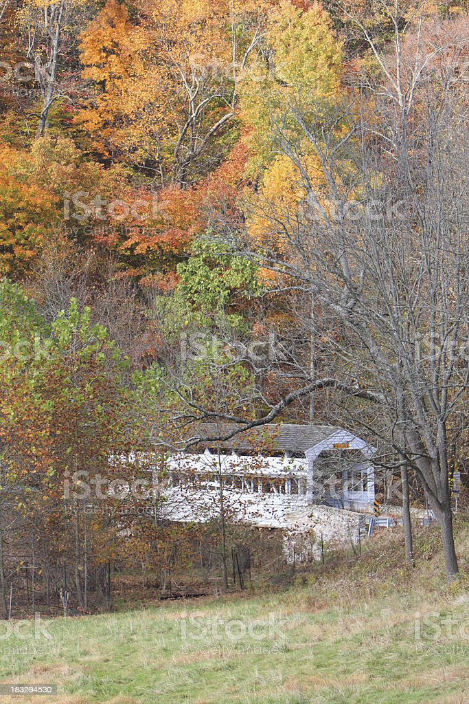 Fall at Valley Forge stock photo