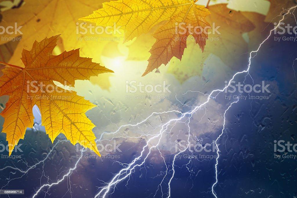 Fall, autumn background stock photo