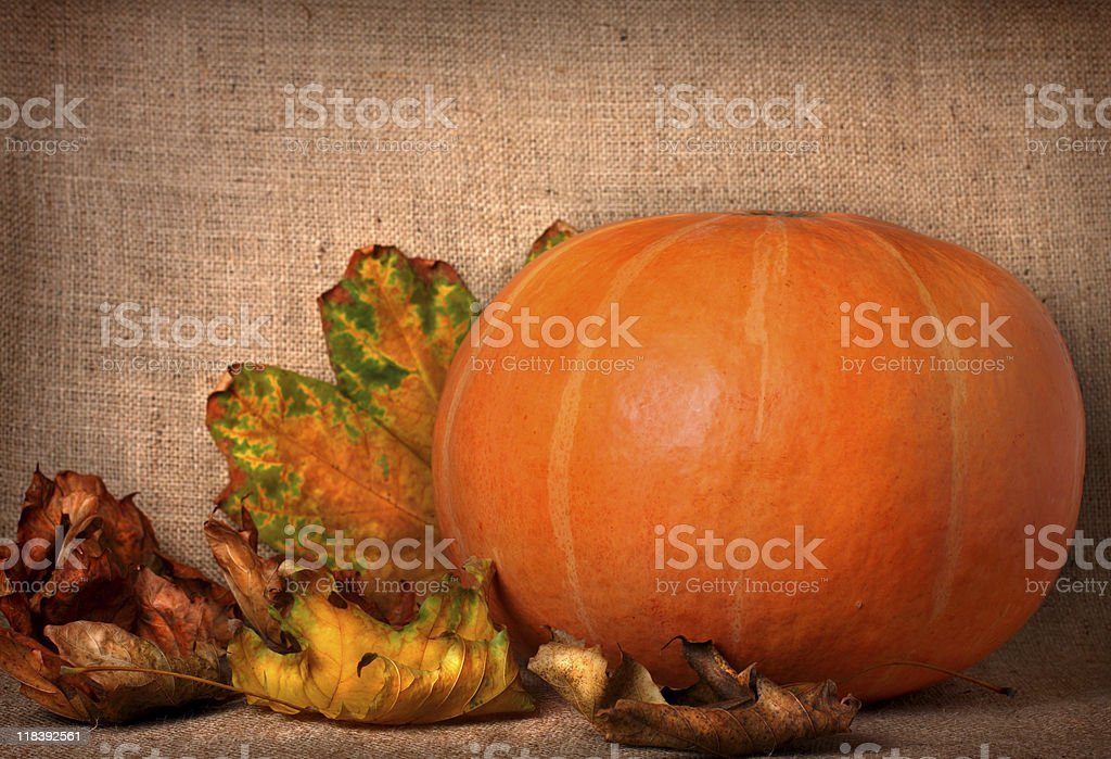 Fall background royalty-free stock photo
