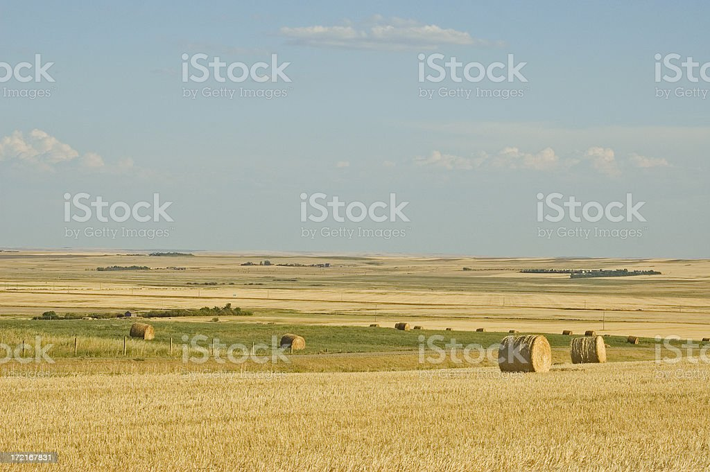 Fall Bale scenic royalty-free stock photo