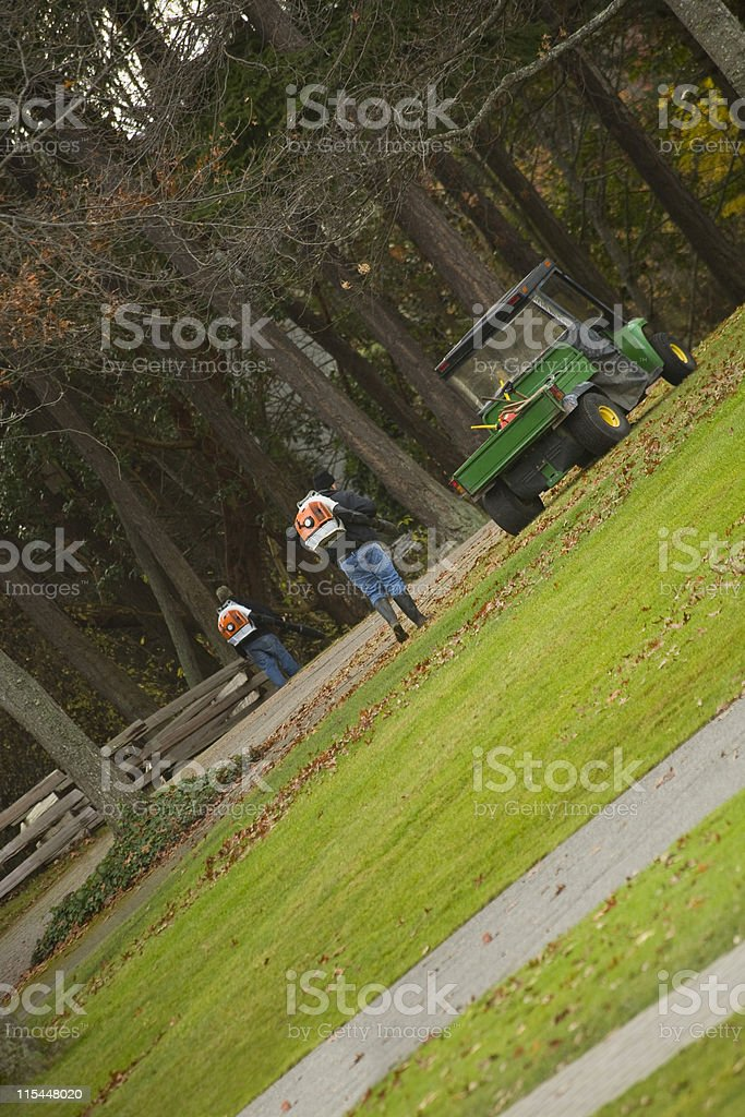 Fall clean up stock photo