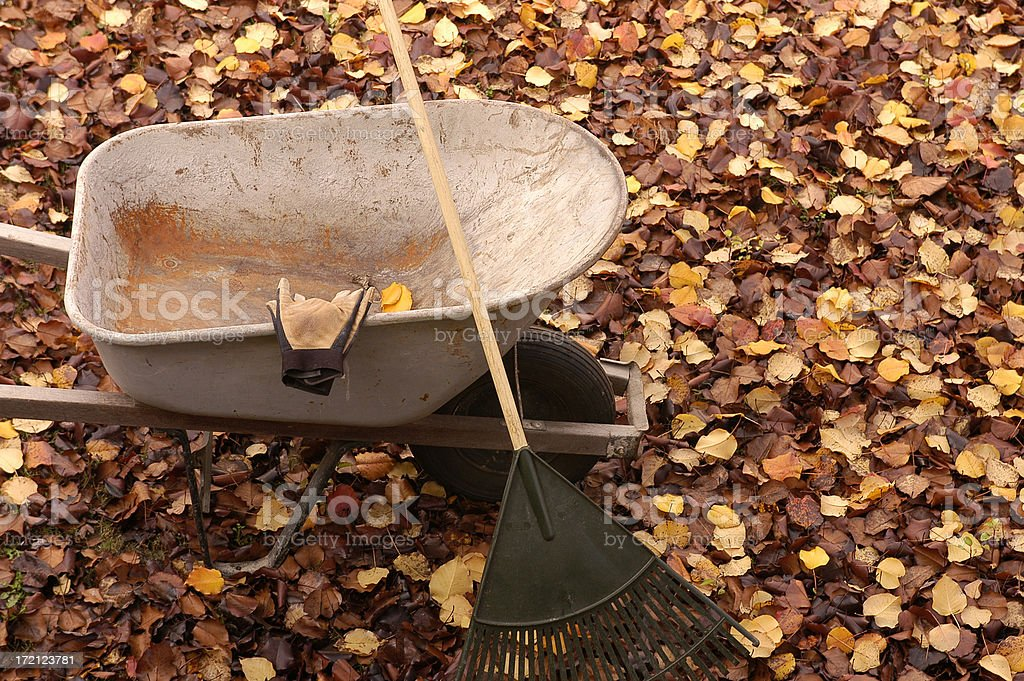 Fall Clean up royalty-free stock photo