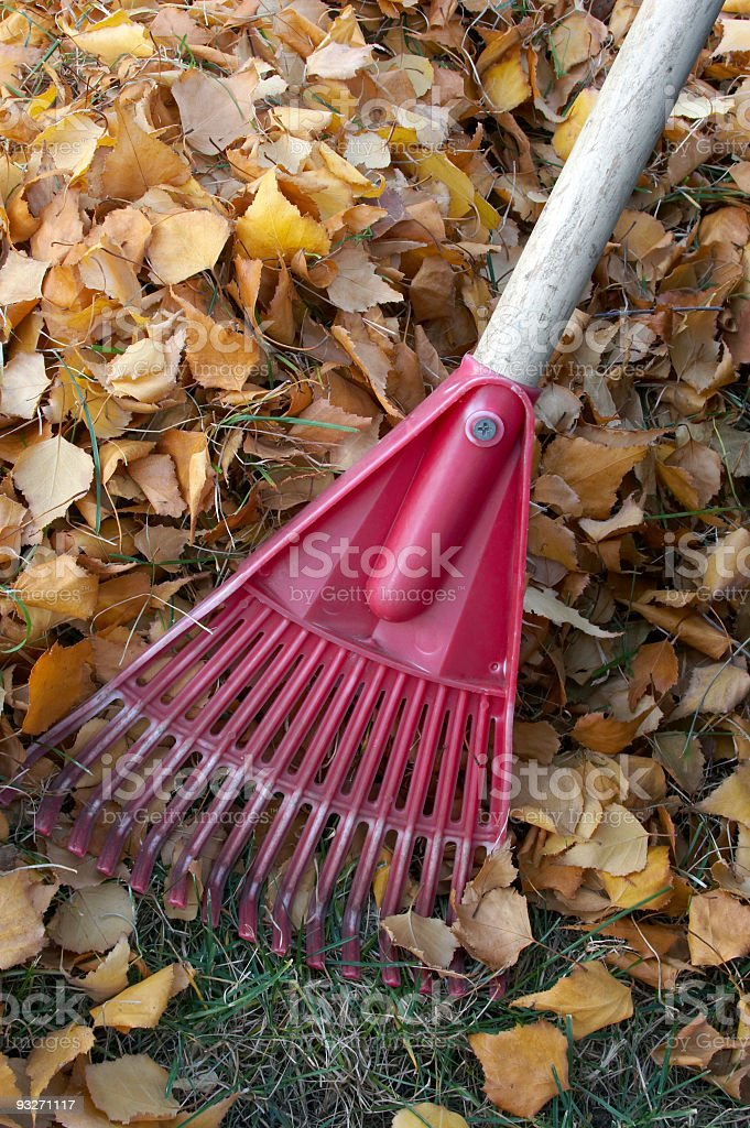 Fall Cleanup royalty-free stock photo